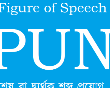 Figure of Speech Pun Discussion in Bengali