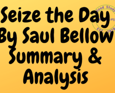 Seize the Day By Saul Bellow Summary & Analysis