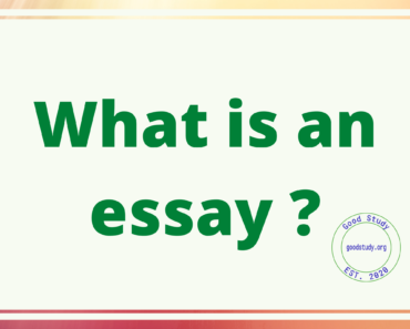 What is an essay ?