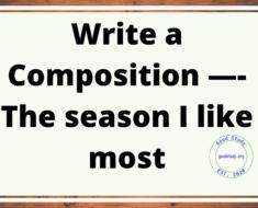 The season I like most