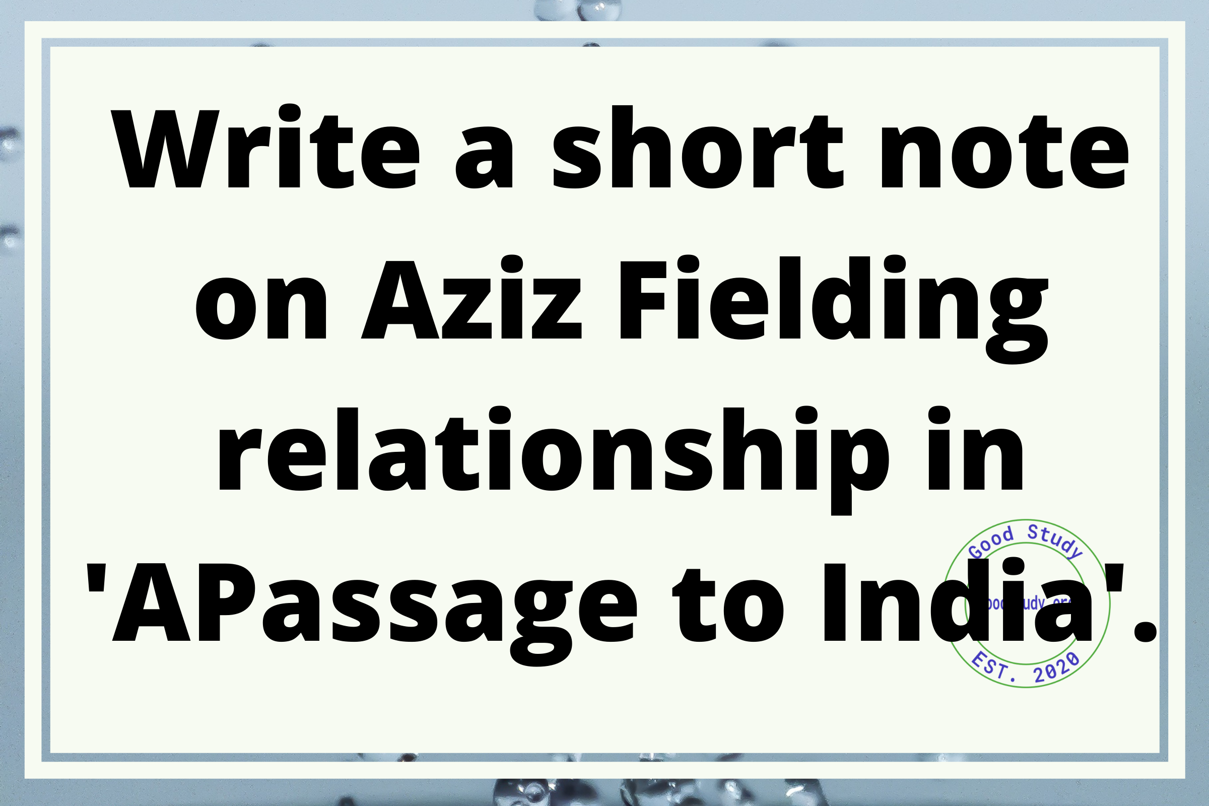 Write a short note on Aziz Fielding relationship in A Passage to India