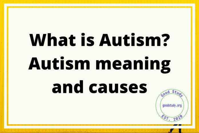 What is Autism ? Autism meaning and causes
