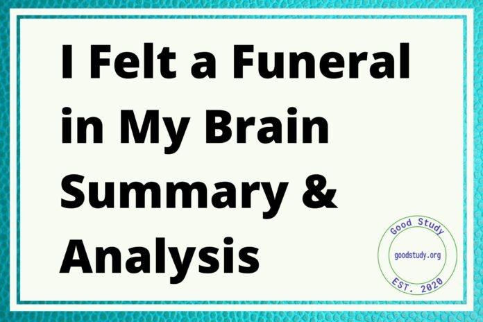 I Felt a Funeral in My Brain Summary & Analysis